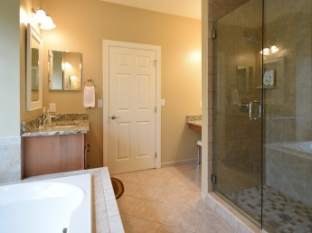 Tub and Shower Master Bath