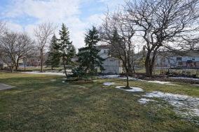 Rear Yard View