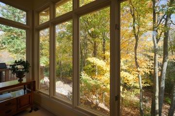 View Capturing Windows